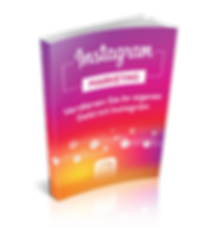 Instagram marketing  ebook.png