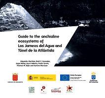 (12) Martinez et al. 2017_Guiaiva-ecosis