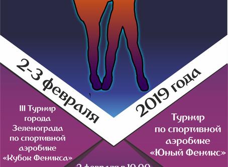 III Турнир города Зеленограда по спортивной аэробике.