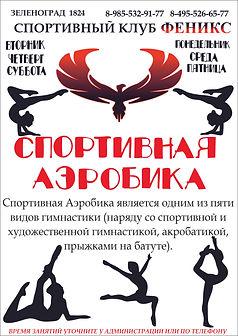 СПОРТ АЙРОБИКА.jpg
