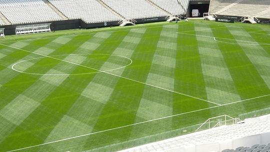 Arena Corinthians Turf.jpg