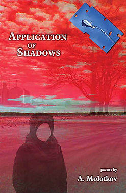 CvrAppShadows_bookstore.jpg