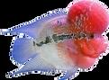 The Aquatic Shop_ Low Prices, Free Shipp