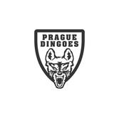 Prague Dingoes | Football Club
