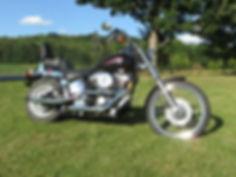 1999 Harley Davidsn Custom
