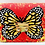 Thumbnail: Carolina red butterfly