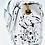 Thumbnail: Carolina white black drip star