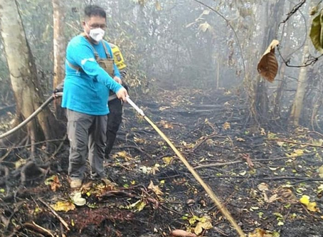 Singaporean Benjamin Tay and team join firefighters in Sumatra to battle the haze