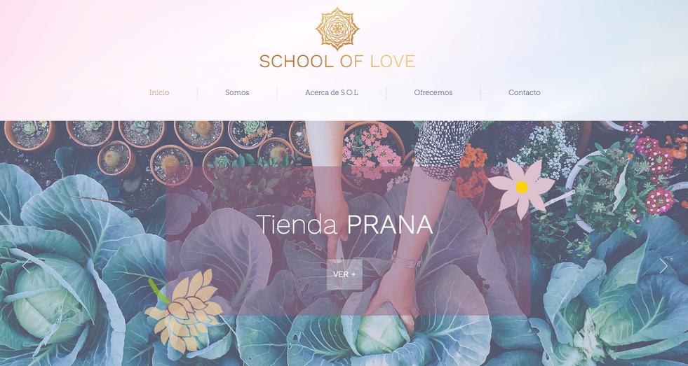 School of Love