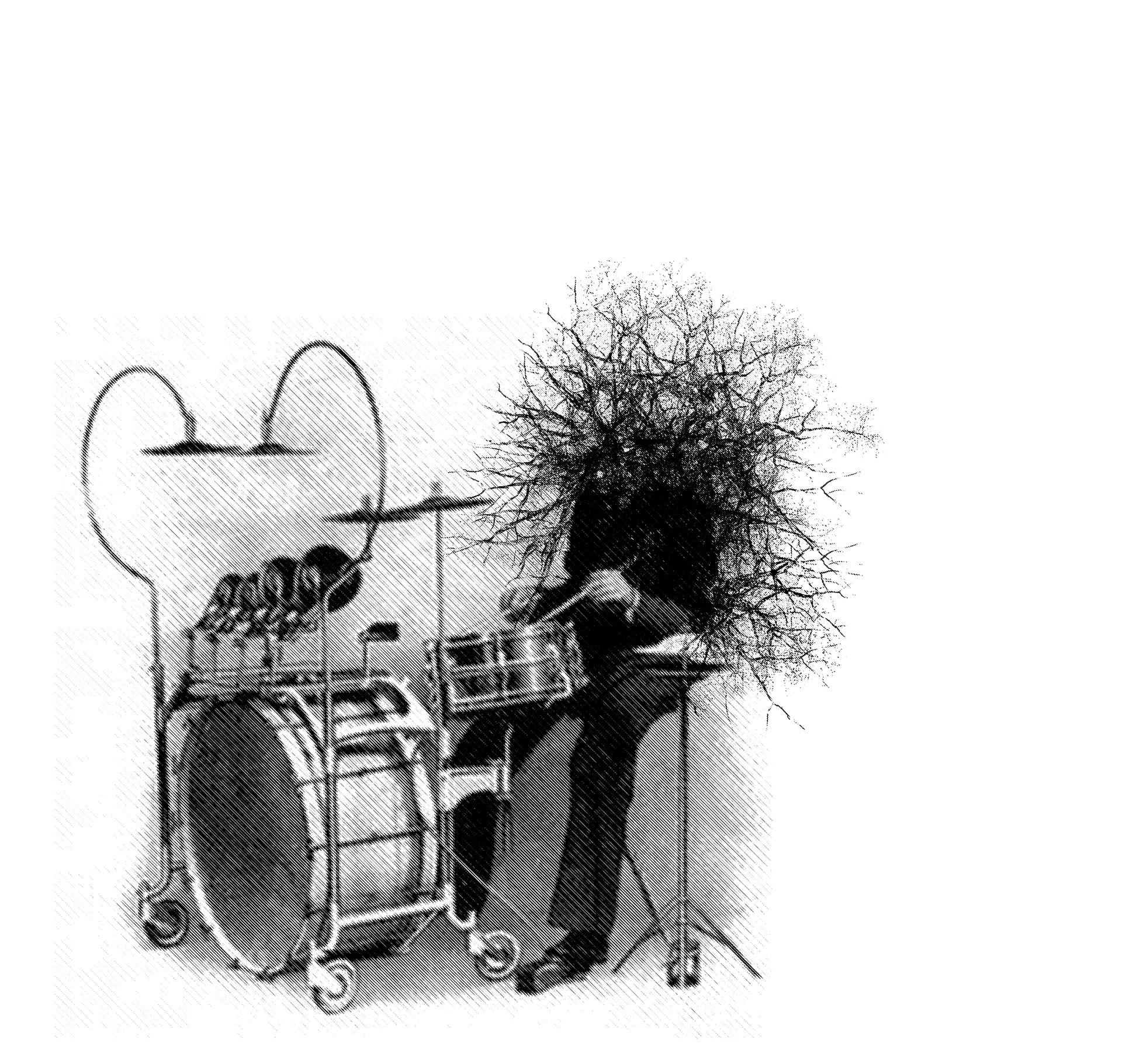 baterista2.jpg