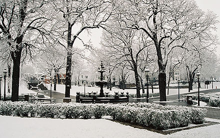winter photo of park with fountain and trees