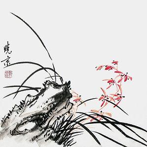 orchidea xieyi