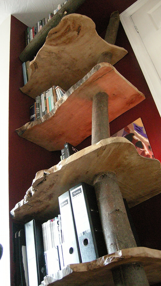 Salvaged Curly Sycamore 'Tree' shelving