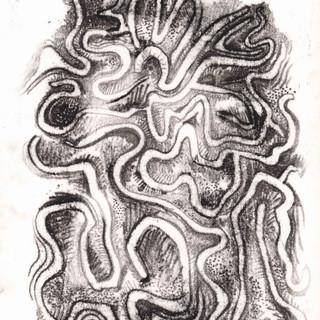 Brain Coral Monoprint