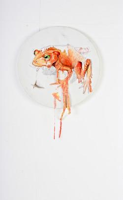 Golden Toad (IUCN: Extinct)