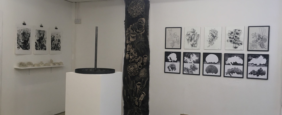 My space in the exhibition