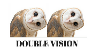 two owls double vision