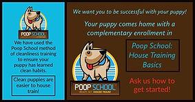 poop school.jpg
