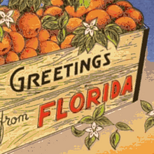 Greetings FL Oranges Posteurized.png