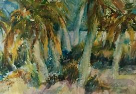 Beach Palms