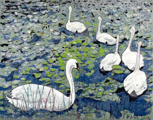 Swans at Lake Katherine