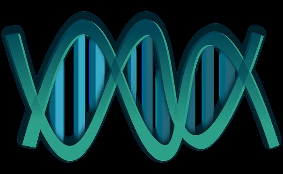 Molecular Diagnostic | Market Research