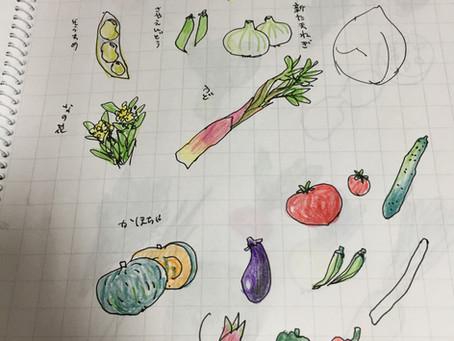 野菜のラフ描き