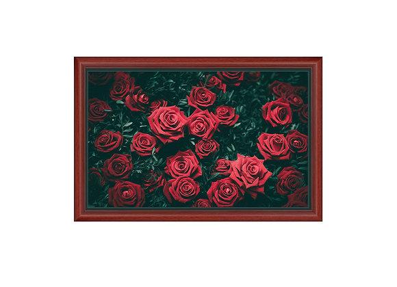Stampa na Platnu -Ruže