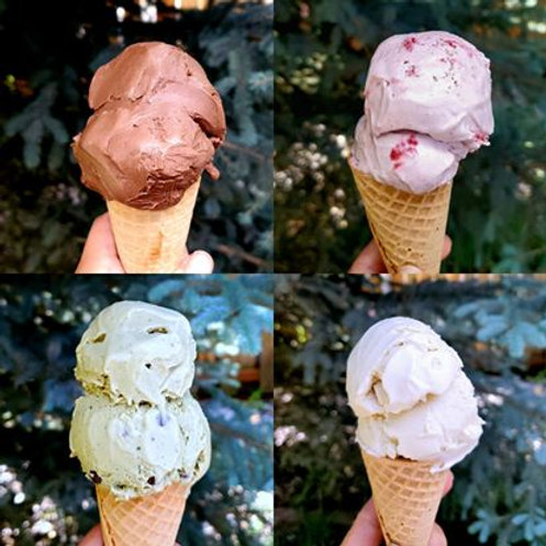 The Hummingbird's Kitchen Vegan Ice Cream ( per pint)