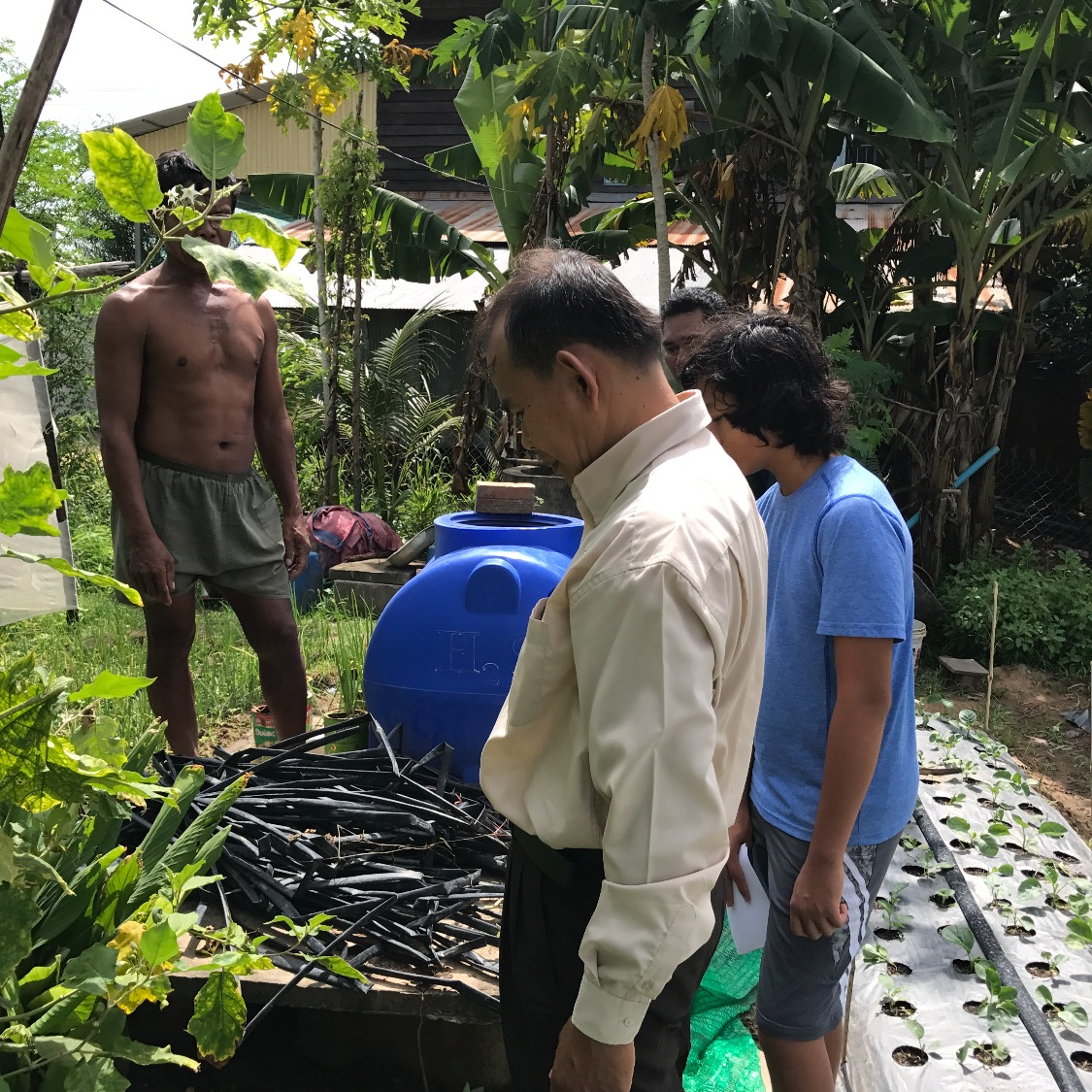 Biogas installation in Cambodia