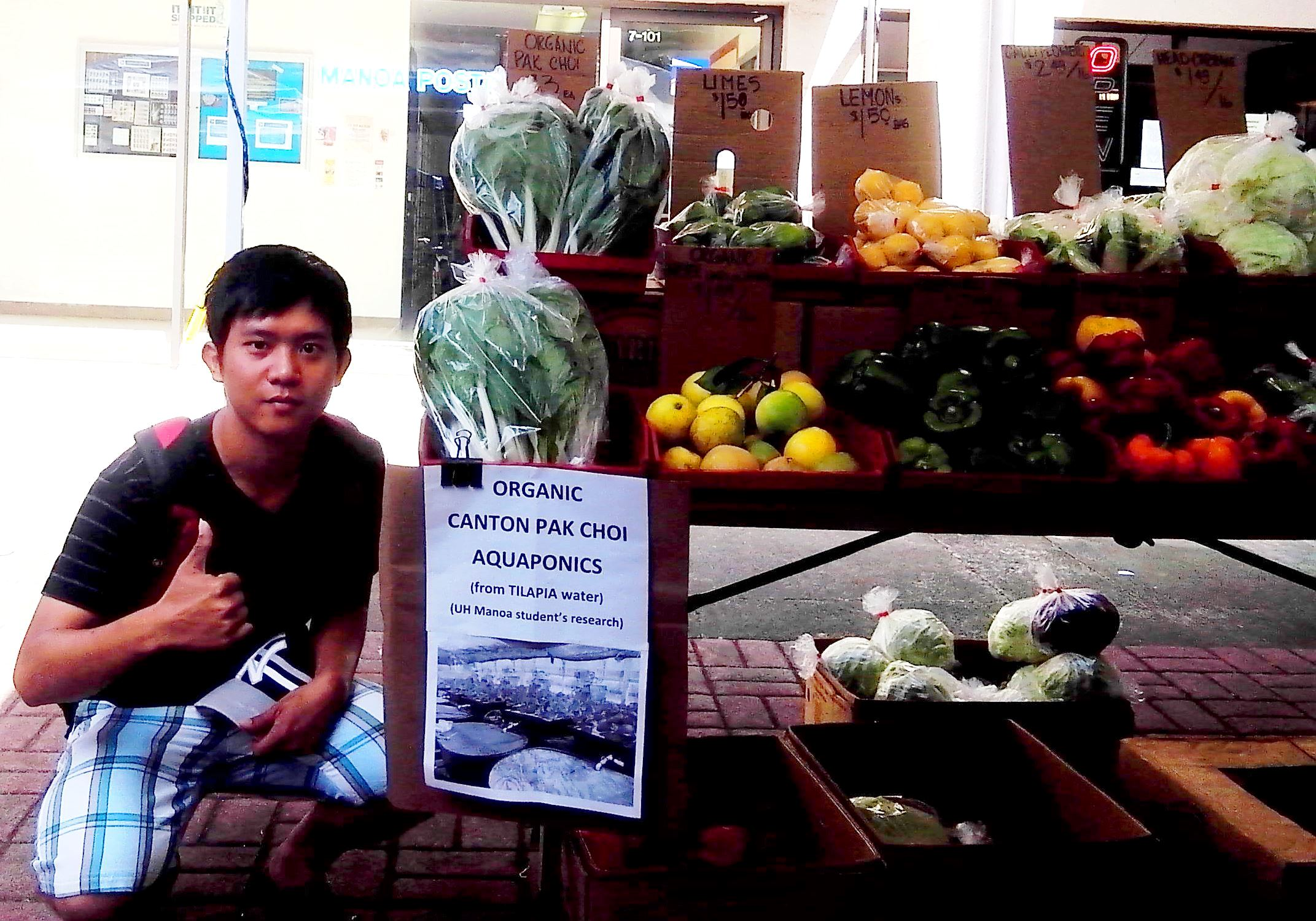 Selling vegetable from aquaponic experiment UH manoa