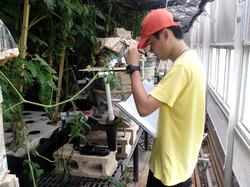 Analyzing aquaponic water quality