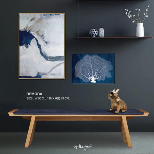 remora2.jpg