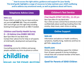 Health, Wellbeing and Emotional Wellbeing Support for Children in Surrey