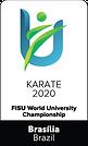 wuc2020_karate1.png