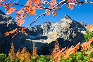 Štít je menej známy pre vysokohorských turistov, avšak veľmi obľúbený pre horolezcov – obzvlášť vyhľadávaná  je južná stena s až 15 možnými výstupovými cestami. Na vrchol nevedie žiadna turistická cesta. Pre turistov je štít prístupný len s horským vodcom.  Výstup začína príchodom po žltej značke k Chate pri Zelenom plese (Brnčalke). Následne existujú 3 rôzne varianty, a to buď Veľkou Zmrzlou dolinou, Malou Zmrzlou dolinou alebo Malou Zmrzlou dolinou cez Čierne sedlo.  Všeobecne možno trasu na vrchol rozdeliť na dve časti – výstup na Čiernu terasu (tu existujú viaceré varianty) a odtiaľ potom na vrchol už jedinou prístupnou cestou.  Náročnosť: – technicky náročný terén s exponovanými pasážami – dobrá kondícia a skúsenosti s vysokohorskou turistikou  Prevýšenie:     1600 m  Počet osôb/horský vodca: max. 3 osoby  Pri neštandarnej trase max. 2 osoby  Cena štandard: 360 € / 3 osoby (iba v letnom období) 320 € / 2 osoby (v zime max. 2 osoby) 300 € / 1 osoba  Cena neštandard: 360 € / 2 osoby 320 € / 1 osoba