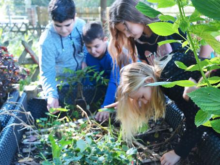 Unser Schulgarten!