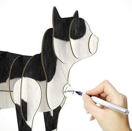 cat-organizerblack-and-white-01-b.jpg