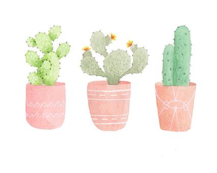 Pastel Cacti - Watercolor print on Etsy.com