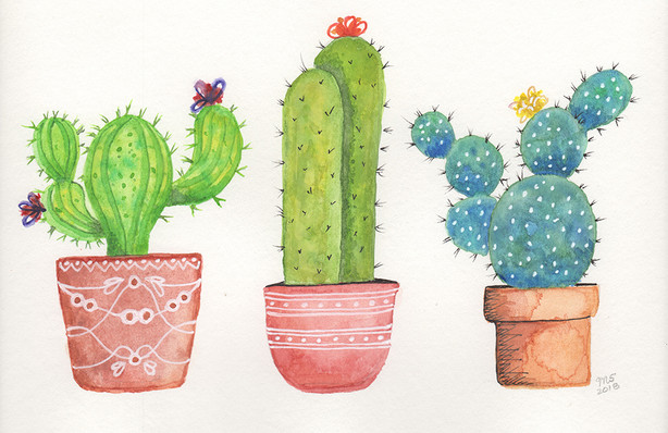 Three Cacti  - Print on Etsy.com