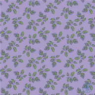 Bedford Lilac Leaves.png