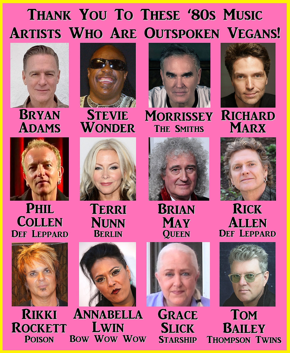 Vegan Musicians