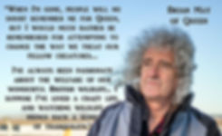 Queen Brian May Vegan