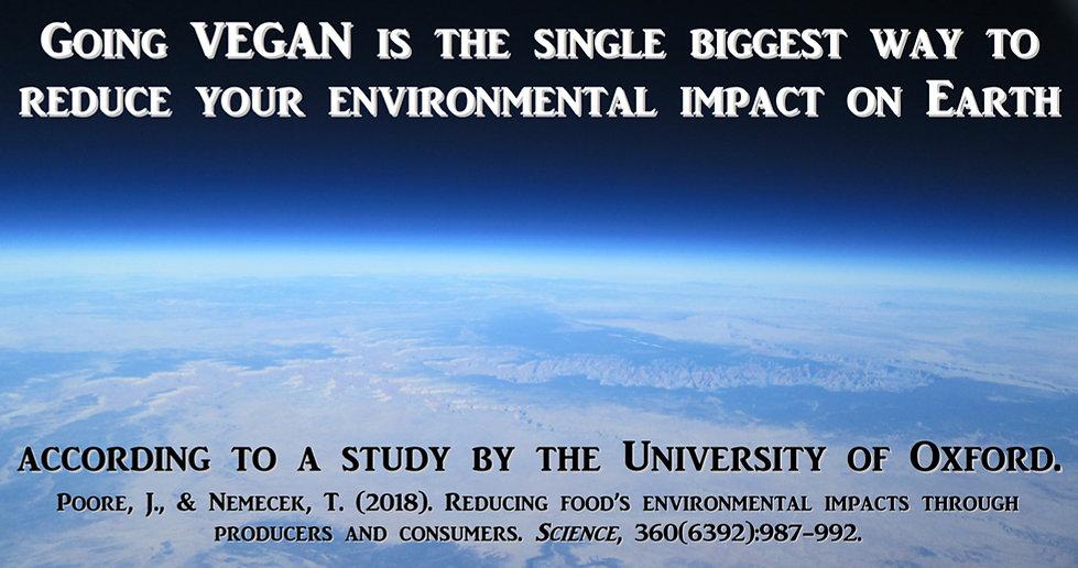 Oxford Study Vegan Environment