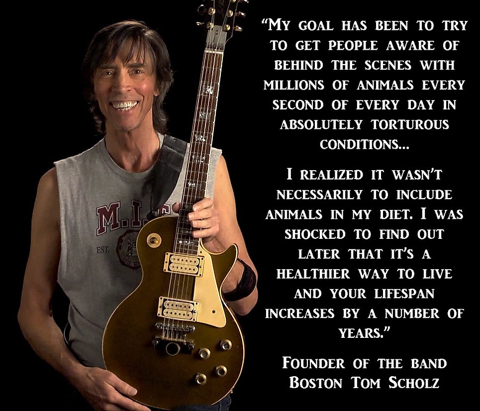 Vegan Tom Scholz Boston