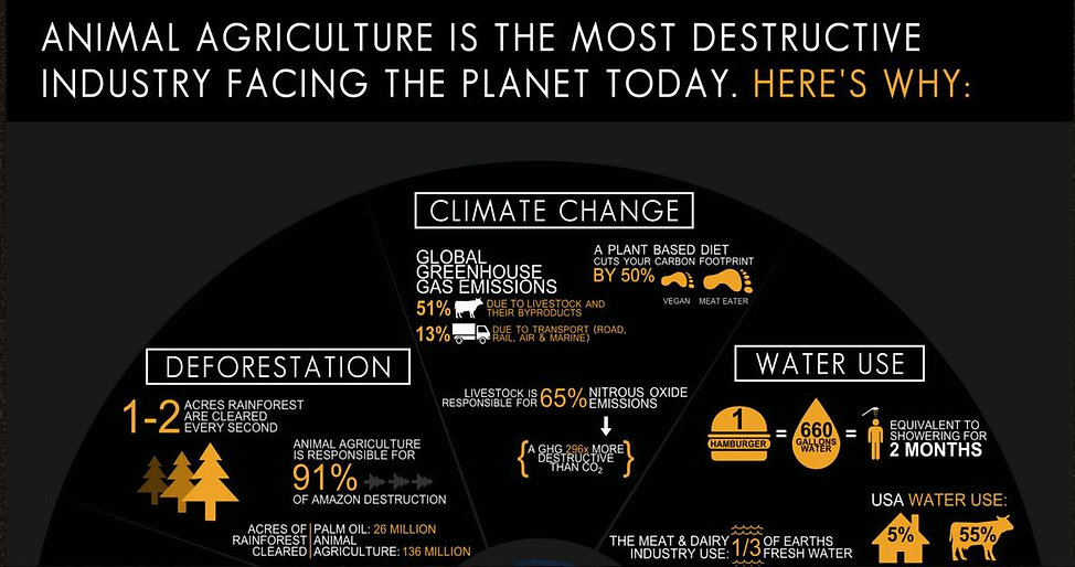 ANimal Agriculture Climate Change