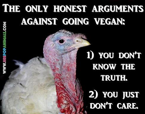 Vegan Argument