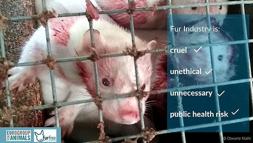 The Fur Industry Is Cruel...
