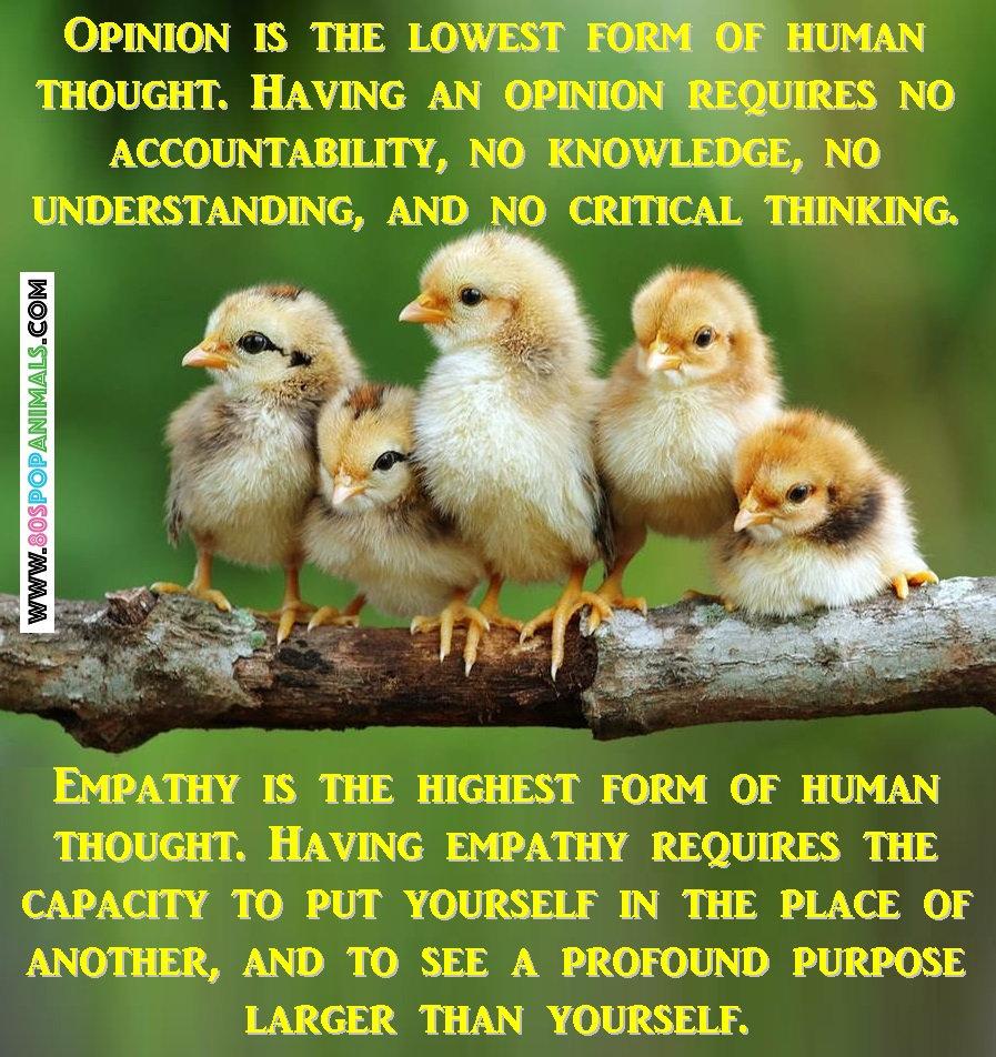 Empathy Opinions