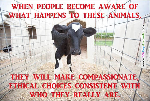 Being vegan is compassionate & ethical